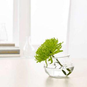 ВИЛЬЕСТАРК Ваза прозрачное стекло 8 см - Артикул: 403.500.58