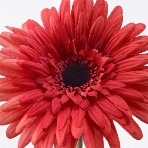 СМИККА Цветок искусственный Гербера/красный 50 см - Артикул: 304.097.33