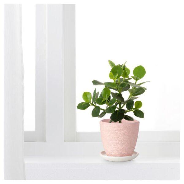 СКАКИГ Горшок цветочный светло-розовый 10 см - Артикул: 204.313.53