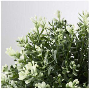 ФЕЙКА Искусственное растение в горшке чабрец 9 см - Артикул: 103.751.78