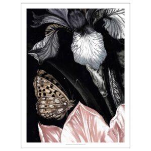 ПЬЕТТЕРИД Картина, Бабочка 50x70 см | 404.482.01