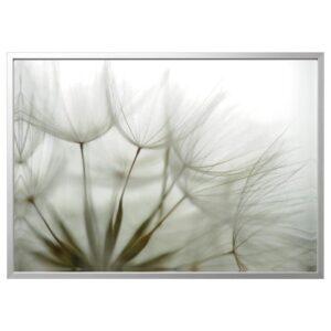 БЬЁРКСТА Картина с рамой, Одуванчик/цвет алюминия 140x100 см | 092.984.21