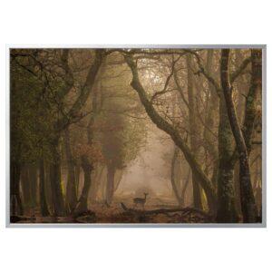 БЬЁРКСТА Картина с рамой, Лань/цвет алюминия 200x140 см - 292.978.59