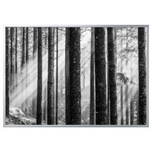 БЬЁРКСТА Картина с рамой, Солнечные лучи/цвет алюминия 200x140 см - 492.978.82