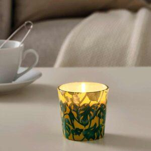 АВЛОНГ Неароматич свеча в стекл подсвечн, Монстера, лист зеленый, 7.5 см - 504.567.47