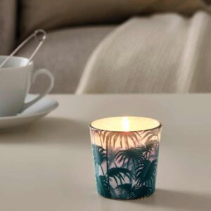 АВЛОНГ Неароматич свеча в стекл подсвечн, пальмовый лист зеленый, 7.5 см - 704.567.51