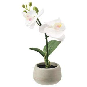 ФЕЙКА Искусственное растение и кашпо, д/дома/улицы, Орхидея белый, 7 см - 604.578.74