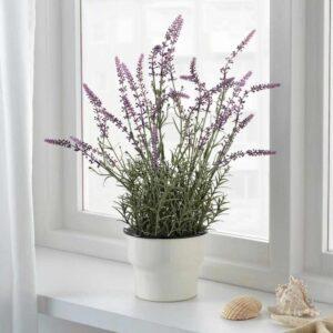 ФЕЙКА Искусственное растение в горшке, лаванда сиреневый, 12 см - 804.523.90