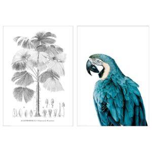 БИЛЬД Постер, Птица и дерево, 50x70 см - 004.738.10