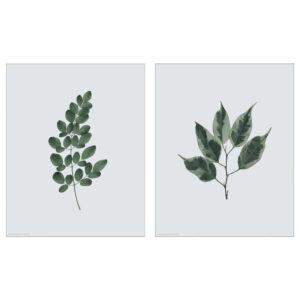 БИЛЬД Постер, Зеленые листья, 40x50 см - 204.738.14