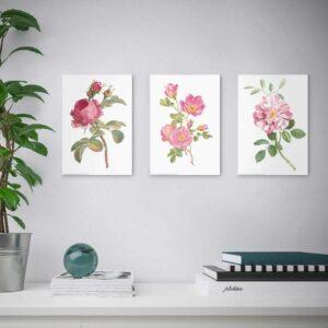 ЭДЕЛВИК Набор постеров,3шт, Цветы, 21x30 см - 804.901.51