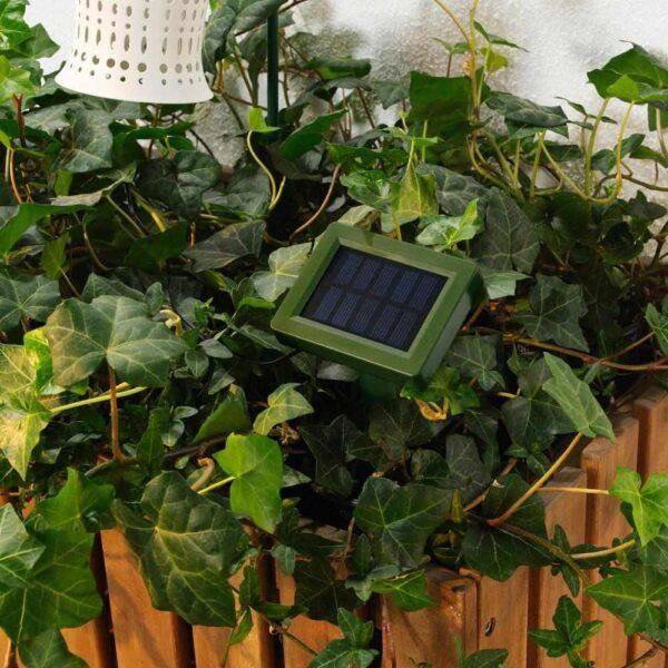 СОЛВИДЕН Подсветка н/солн батарее,светодиод, для сада, подснежник белый - 404.543.10