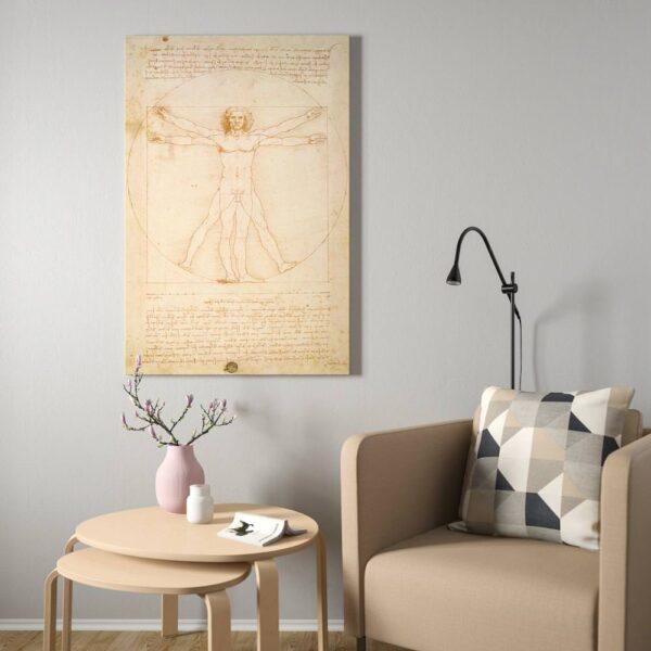 БЬЁРКСТА Картина с рамой, Витрувианский человек, цвет алюминия - 093.847.77