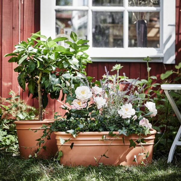 КЮРРИБЛАД Ящик для цветов, для сада терракота 55x24 см - 004.758.28