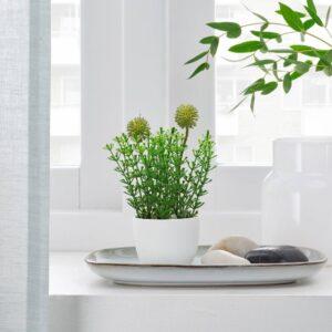 ФЕЙКА Искусственное растение и кашпо, д/дома/улицы трава 6 см - 604.761.70