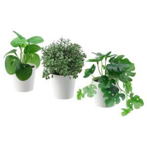 ФЕЙКА Искусственное растение в горшке,3шт, д/дома/улицы зеленый 6 см - 104.852.09