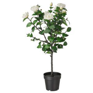 ФЕЙКА Искусственное растение в горшке, д/дома/улицы/Камелия белый 19 см - 904.761.21