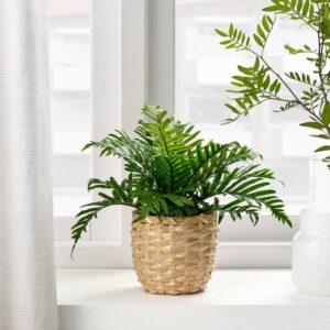 ФЕЙКА Искусственное растение в горшке, д/дома/улицы Полиподиум 9 см - 604.933.44