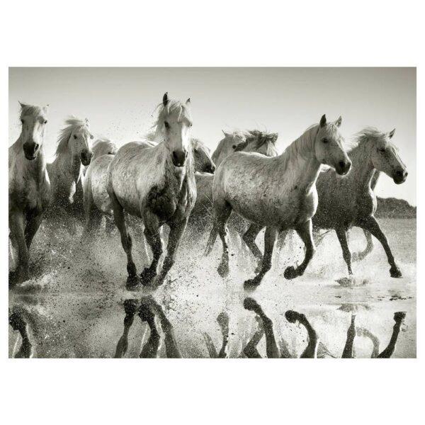 ПЬЕТТЕРИД Картина, Дикие лошади 70x50 см - 704.955.83