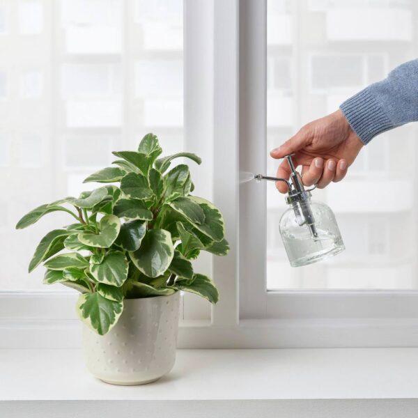 СЕСАМФРЁН Опрыскиватель для растений, прозрачное стекло 25 сл - 404.881.88